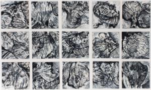 Onions (1995), 21,5 x 21,5 cm each, acrylic on Masonite, inv. PH244B